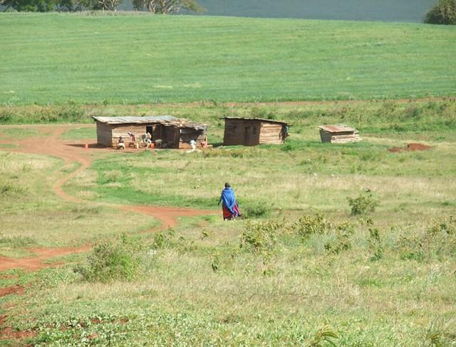 OI_country_report_tanzania