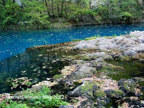 The color of Una spring