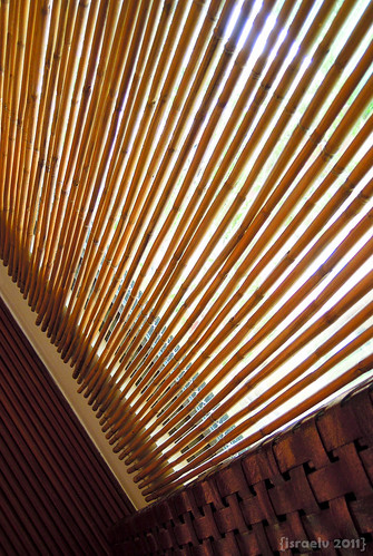 Bamboo Blinds by {israelv}