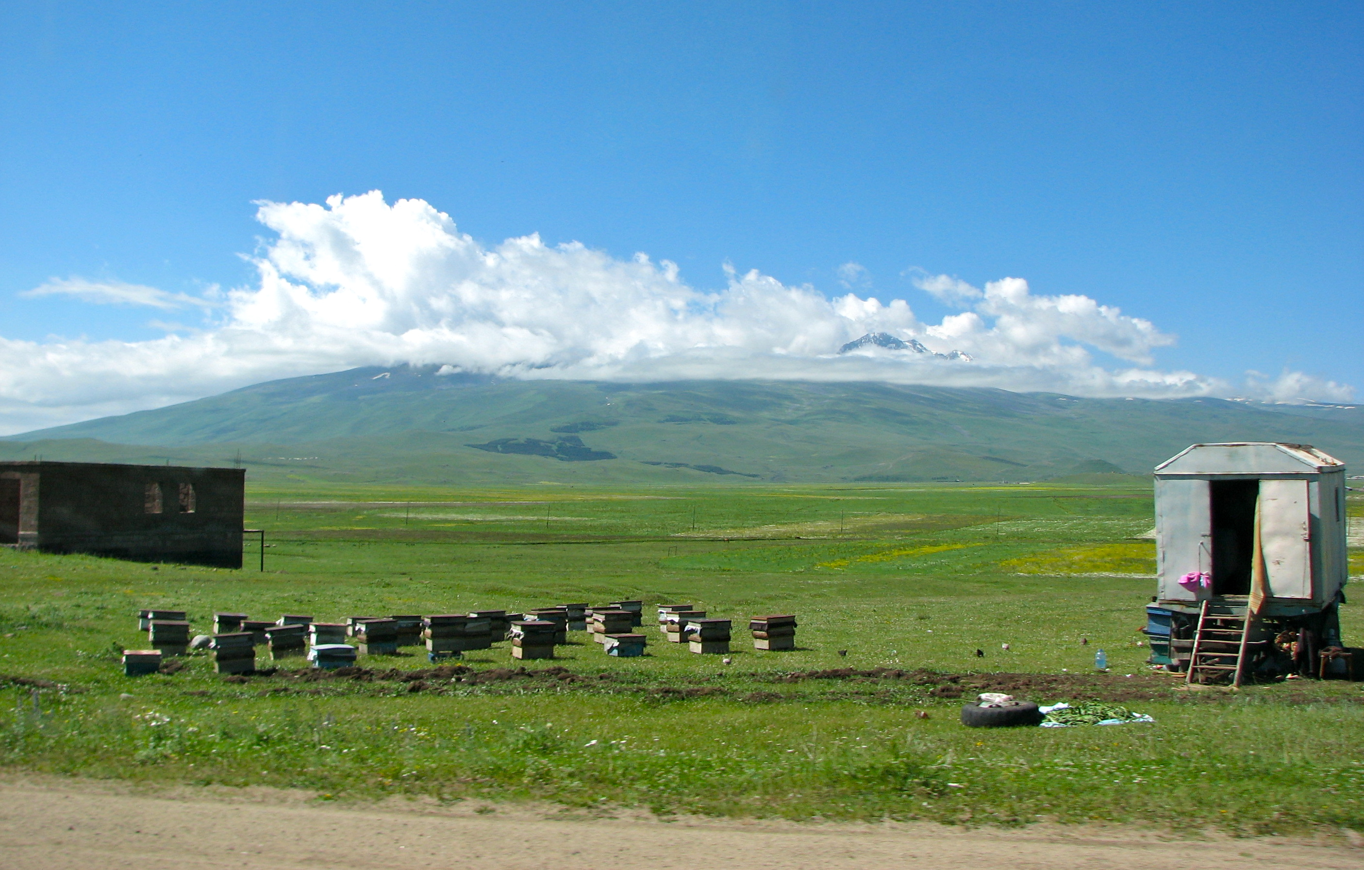 Beehives in the countryside of Tbilisi Georgia