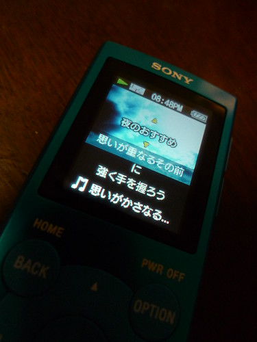 P1160444.JPG