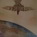 Abdulhay Khattab -Coffee-and-Ink-on-Cartoon-Board- 25X18 -ttl_ Martyr