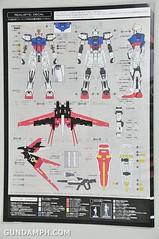 RG 1-144 Strike Rouge Gundam Plamodel EXPO Limited Version Unboxing Photos (18)