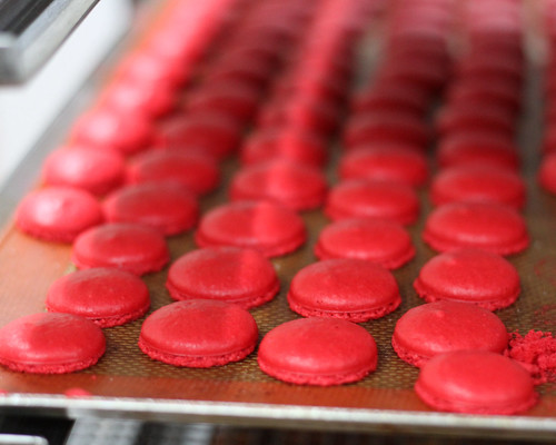 Macaroons at Brasserie Cicou