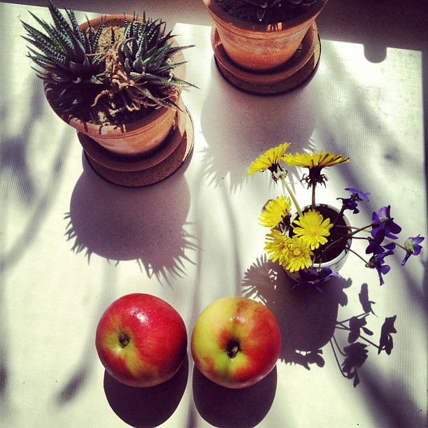 Still life with shadows and apples