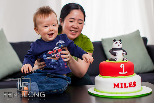 Miles' First Birthday Party
