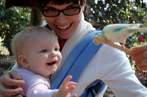 Bea loved the parakeets.