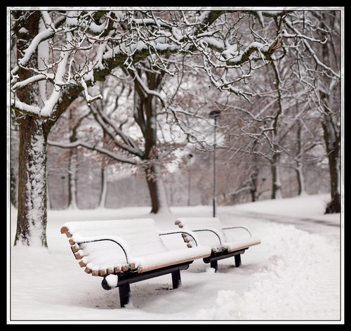 45/366 - Winter bench by Flubie