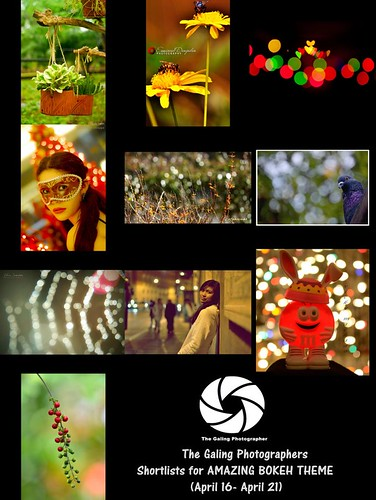 TGP - Shortlist - Amazing Bokeh Theme by {israelv}