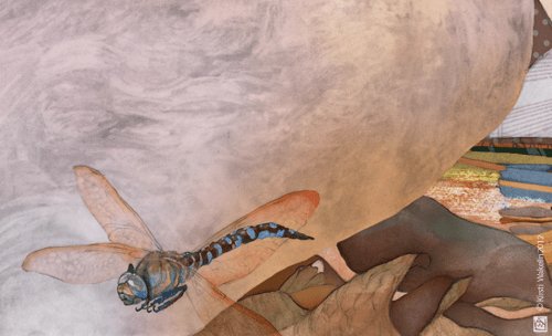 Dragonfly - illustration detail