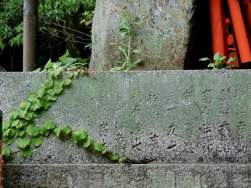 fushimiri-inari-taisha19