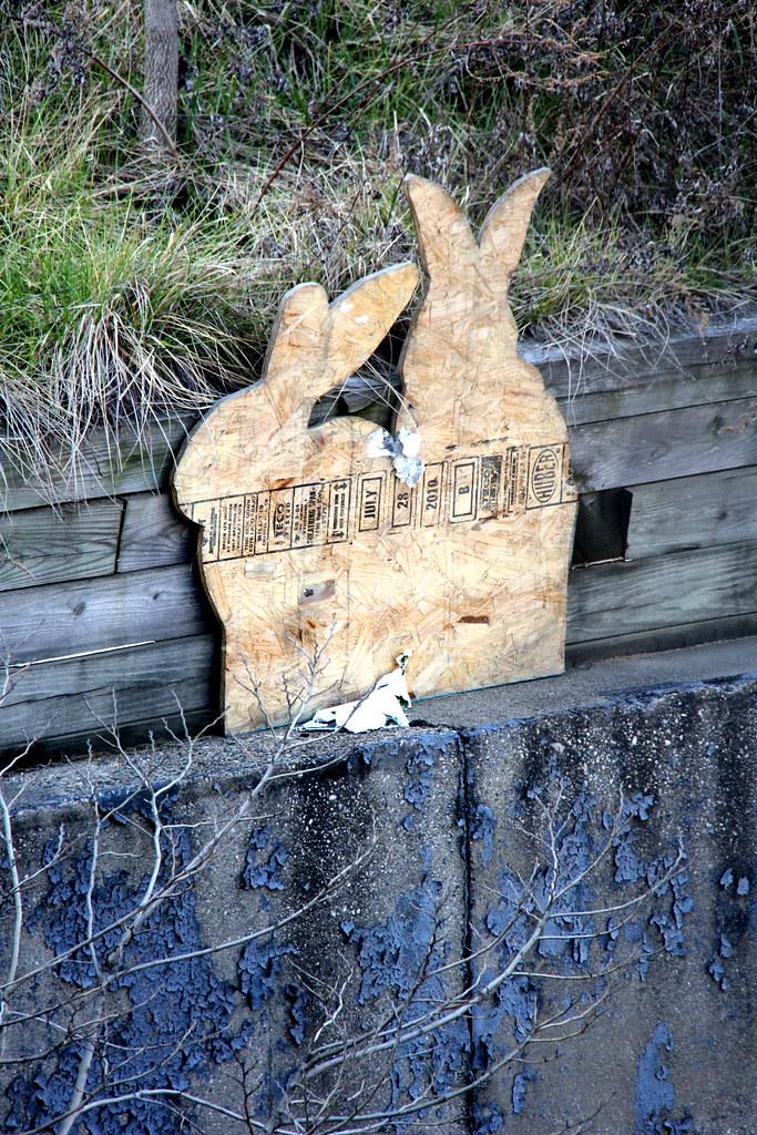 Gowanus Rabbits