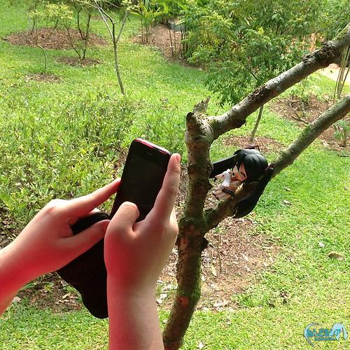 Taking photo using smartphone