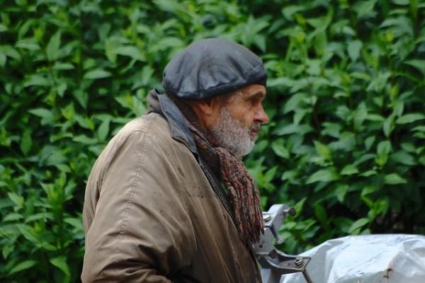 Le vieil homme et la pluie