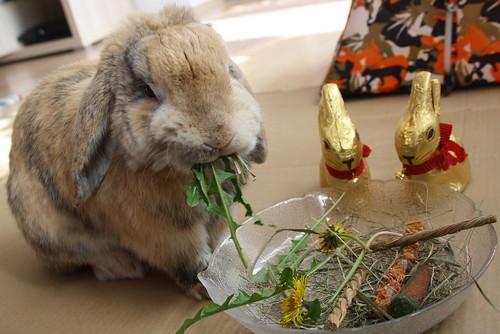 Yummy - 08.04.2012