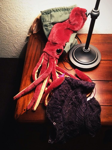 Day 169 of Project 365: Squiddy Knitty