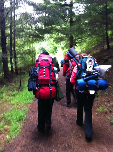 Hikers by Dana Bartus