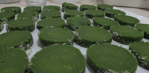 green tea sable2