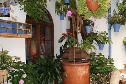 Cuerda Pozo y flores en los Patios de Córdoba