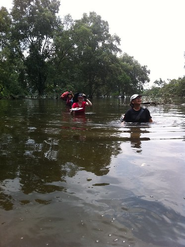 143mandai_mangrove_recce-24may2012