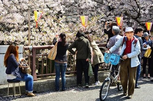 Sakura with my Nikon D800