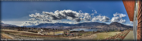 Spring time view from Poplar Grove Wine shop by passion4vin