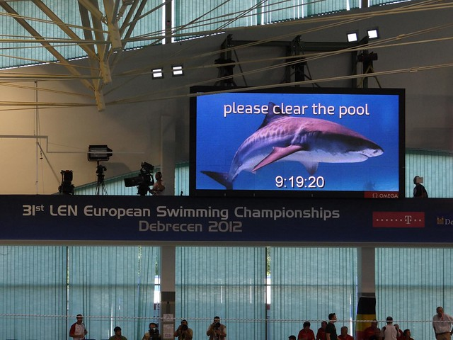 Please clear the pool