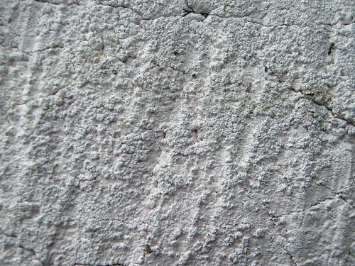 concrete by Kassandra.Photography