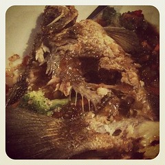 Aftermath: bony barramundi now!