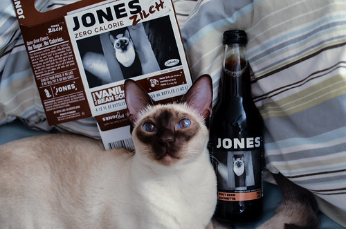 Cinny Jones Soda