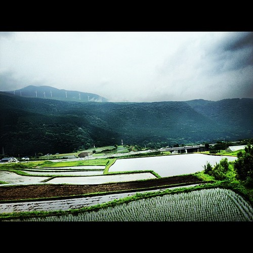 Rice fields and Distant Mountain Windmills on the way #aso #kyushu #japan