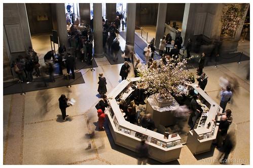 New York - Metropolitan Museum I