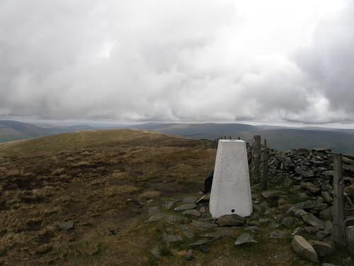 Calf Top Trig Pillar