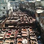 La vecchia conceria nella Medina di Fes