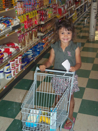 My little shopper enjoy her sized carts in Olney at her favorite Grocery Store Stewarts