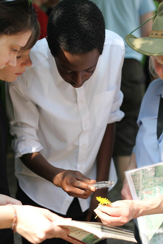 Students from Orchard School inspect wild flower using guide