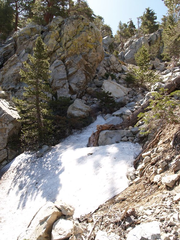 Snow patch in the couloir on the Cucamonga Peak Trail