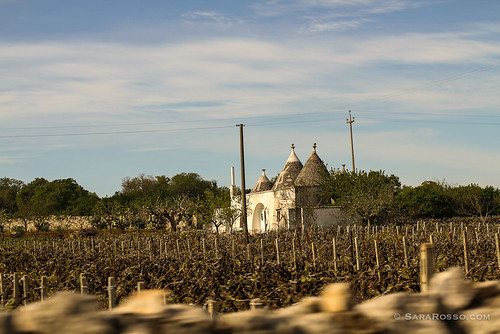 Trulli in the countryside, Puglia