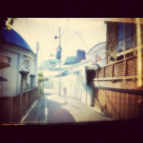 329: taking a walk in harajuku today.