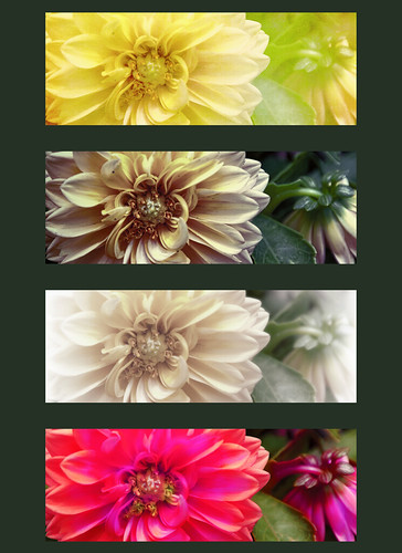 how to make a lightroom print template