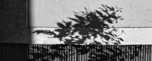 Arquitecte de jardins: by Barcelombres