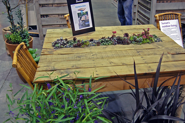 Succulent Pallet Table