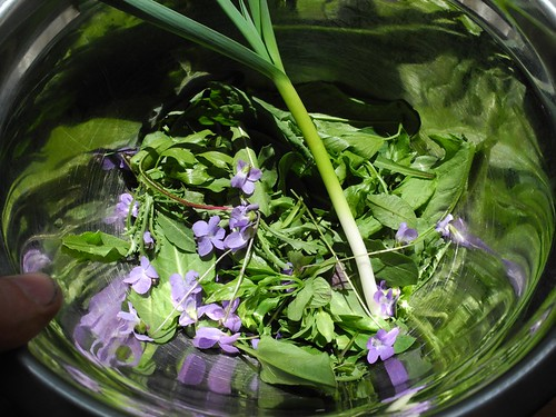 wild violet and garlic salad