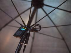 An Umbrella For 2, Singapore Arts Festival 2012
