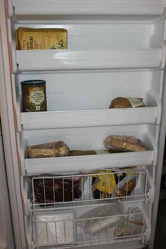 Daja's Big Freezer Door--THREE MONTHS