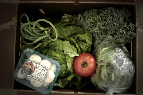 Vegetable Share, week 3