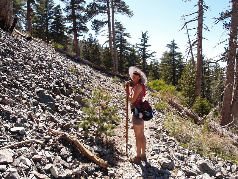 Vicki keeps looking up hoping to see more Bighorn Sheep on the Cucamonga Peak Trail