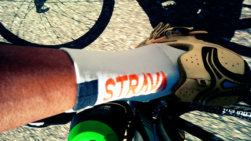 ambassadeur strava socks castelli