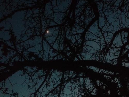 night_0108