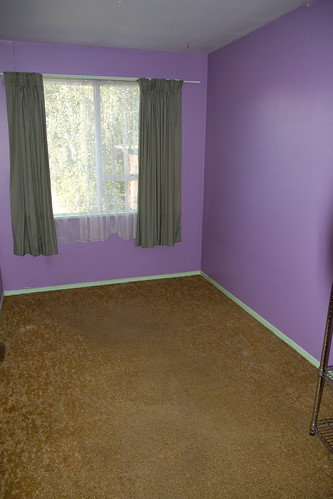 CarpetED-3042